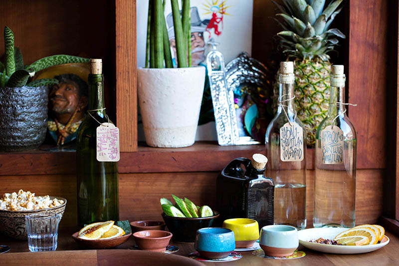An Introduction to Mezcal | Bartender Atlas