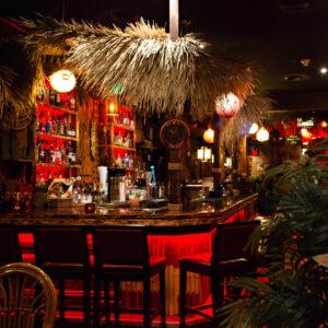 The Shameful Tiki Room | Bartender Atlas
