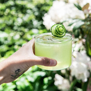 Cocktail: Warrior Bird | Bartender Atlas